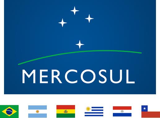 Soluções perfeitas e otimizadas em transporte para sua empresa no Mercosul